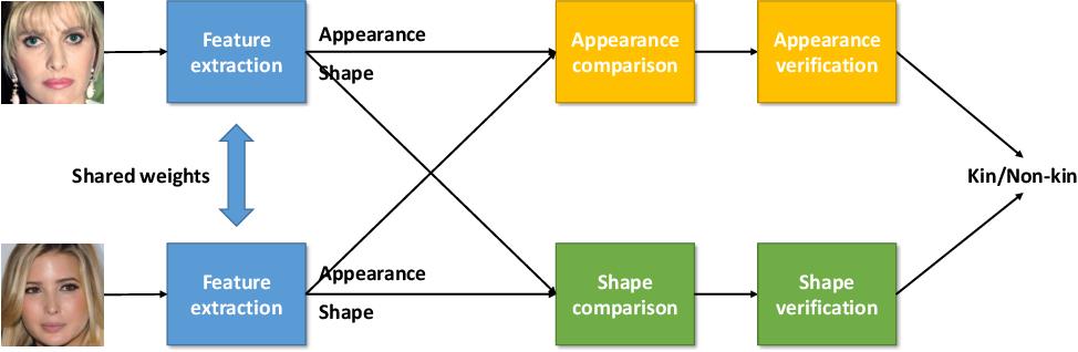 Figure 1 for Deep Kinship Verification via Appearance-shape Joint Prediction and Adaptation-based Approach