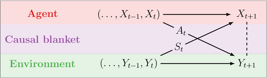 Figure 2 for Causal blankets: Theory and algorithmic framework