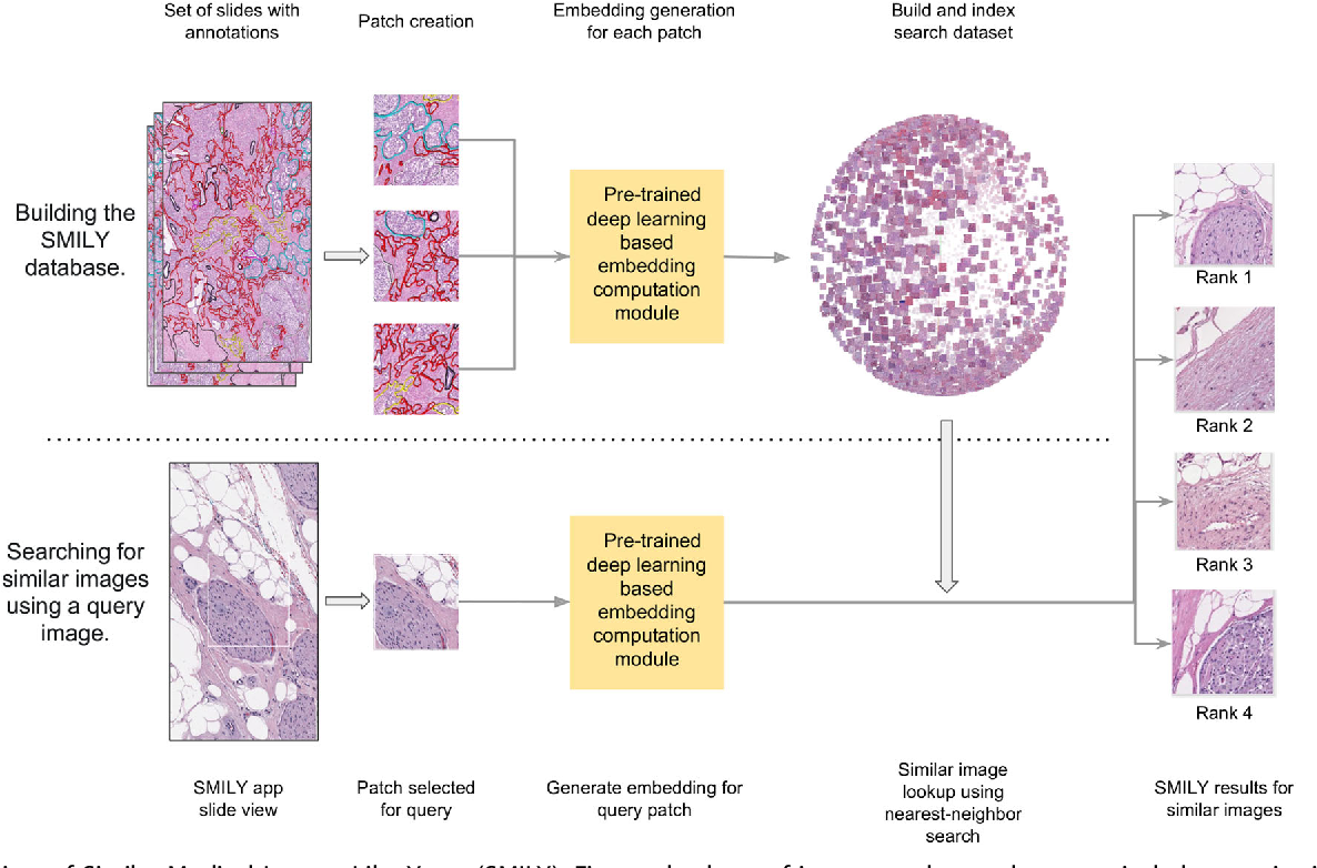 Figure 1 for Similar Image Search for Histopathology: SMILY