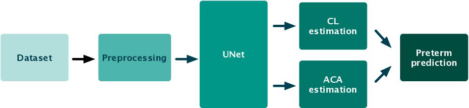 Figure 1 for Estimation of preterm birth markers with U-Net segmentation network