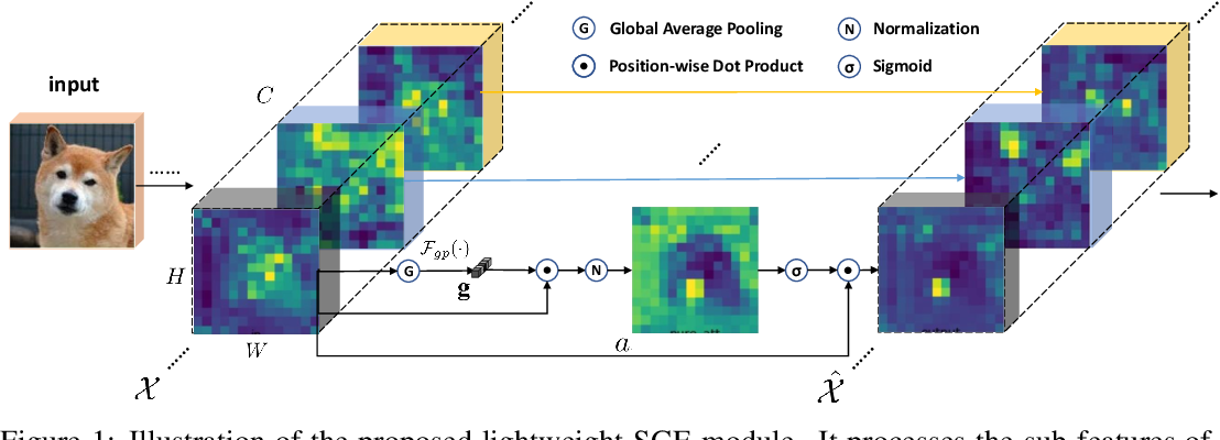 Figure 1 for Spatial Group-wise Enhance: Improving Semantic Feature Learning in Convolutional Networks