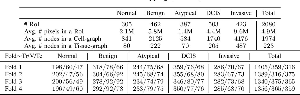 Figure 4 for HACT-Net: A Hierarchical Cell-to-Tissue Graph Neural Network for Histopathological Image Classification
