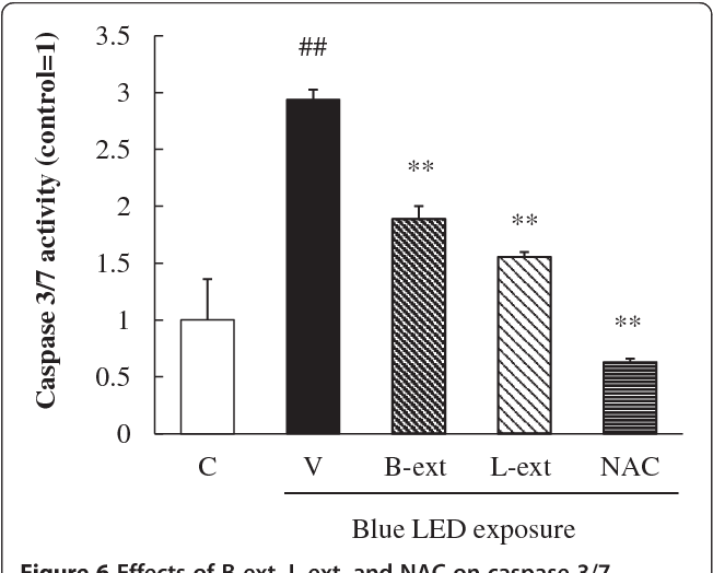 Figure 6 Effects of B-ext, L-ext, and NAC on caspase 3/7 activation in 661 W cells. Cells were pretreated with B-ext, L-ext, or NAC for 1 h, and then exposed to 2500 lx of blue LED light for 6 h. The luminescence and fluorescence of the cells cultured in a 96-well plate were measured with a spectrophotometer, and the caspase-3/ 7 activity per cell was calculated. Data are represented as means ± SEM (n = 6). C, control; V, vehicle; B-ext, bilberry extract; L-ext, lingonberry extract. ##p < 0.01 vs. control; **p < 0.01 vs. the vehicle-treated group (Student's t-test).