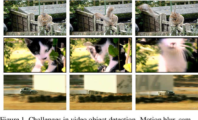 Figure 1 for Sequence Level Semantics Aggregation for Video Object Detection