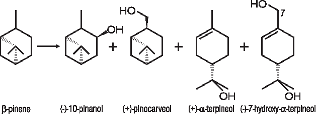 Figure 2 from The essential oil of turpentine and its major volatile