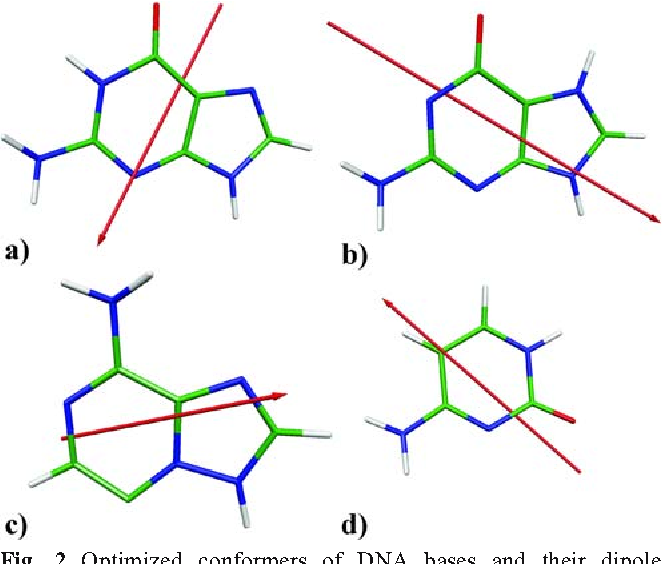 Pt Bridges In Various Single Strand And Double Helix Dna Sequences