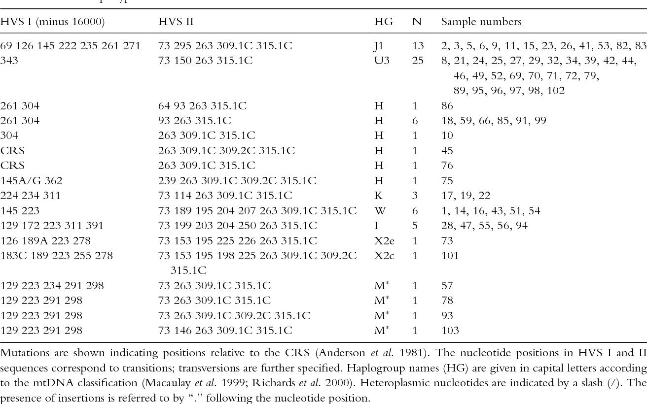 Mitochondrial DNA diversity in the Polish Roma  - Semantic