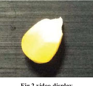 Software implementation of corn grain morphology detection based on