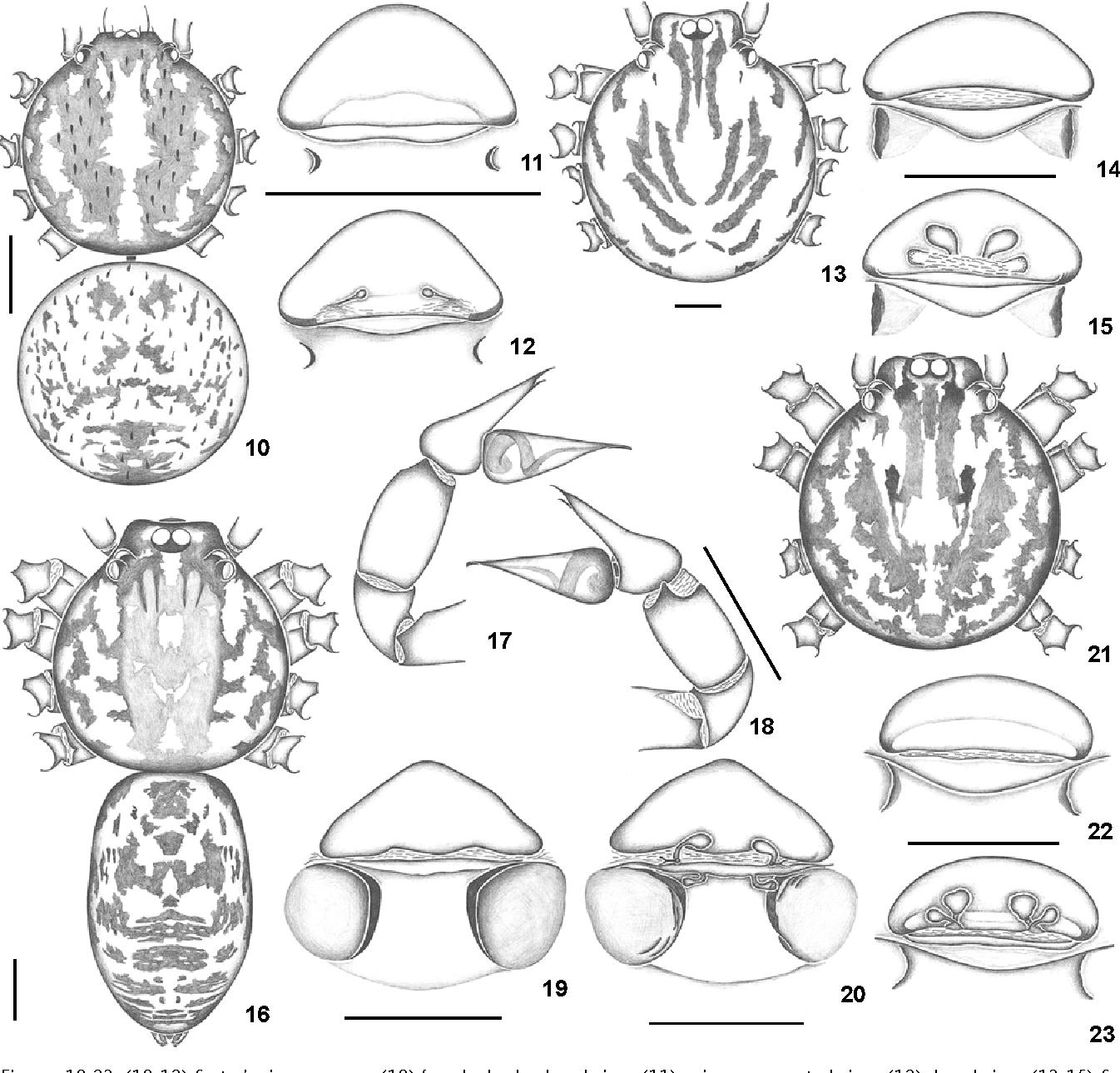 figure 10-23