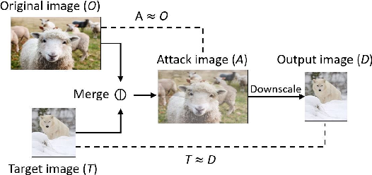 Figure 3 for Decamouflage: A Framework to Detect Image-Scaling Attacks on Convolutional Neural Networks