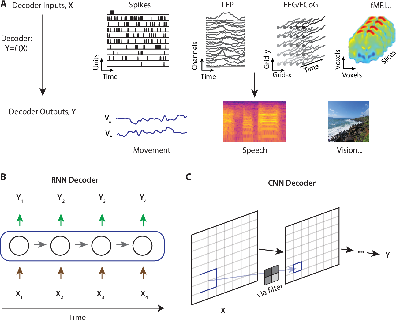 Figure 1 for Deep learning approaches for neural decoding: from CNNs to LSTMs and spikes to fMRI