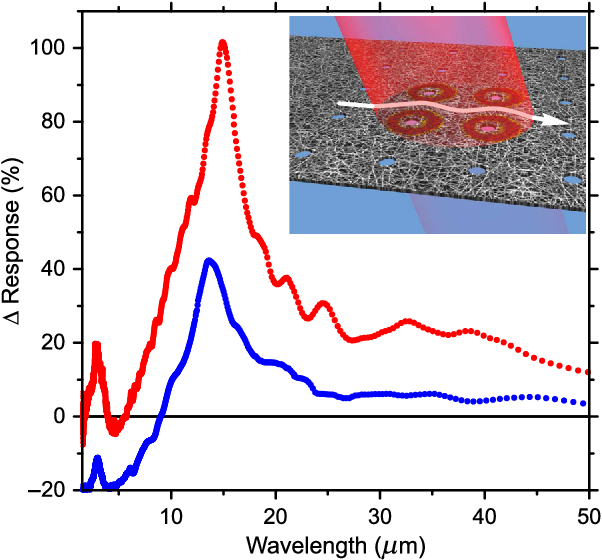 PDF] Midinfrared Surface Plasmons in Carbon Nanotube Plasmonic