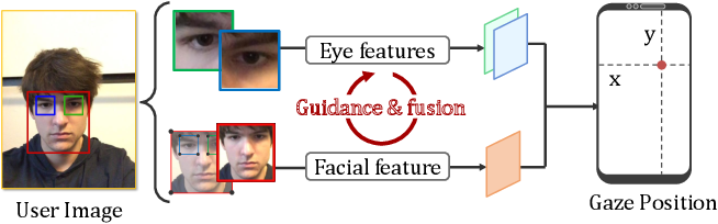 Figure 1 for Adaptive Feature Fusion Network for Gaze Tracking in Mobile Tablets