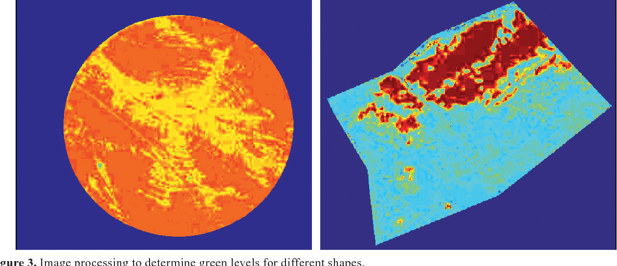 Figure 3. Image processing to determine green levels for different shapes.