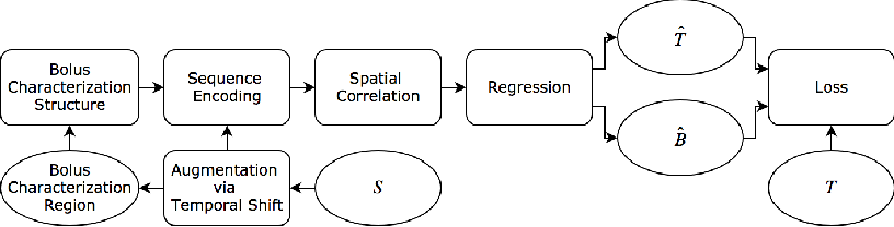 Figure 1 for Synthetic Perfusion Maps: Imaging Perfusion Deficits in DSC-MRI with Deep Learning