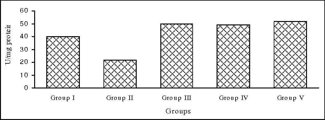 Fig. 3. Effect of different extracts of Syzygium cumini on activity of superoxide dismutase