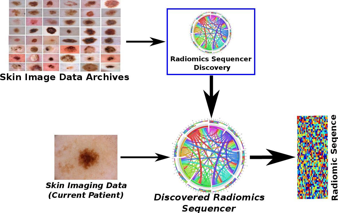 Figure 1 for Discovery Radiomics via Deep Multi-Column Radiomic Sequencers for Skin Cancer Detection