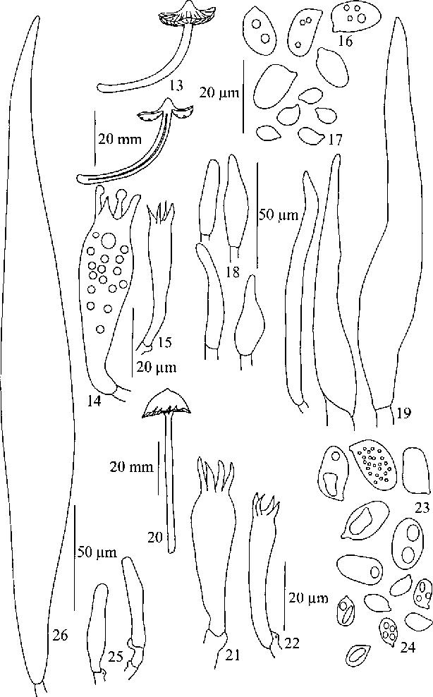 figure 13-26