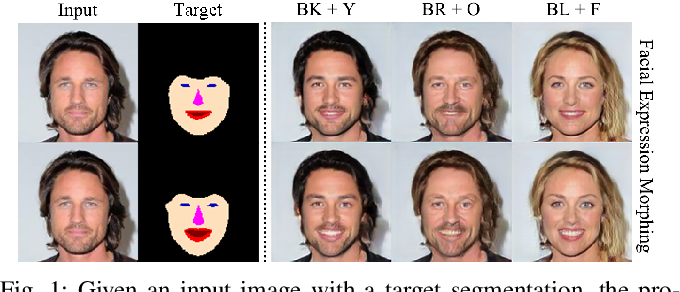 Figure 1 for Segmentation Guided Image-to-Image Translation with Adversarial Networks