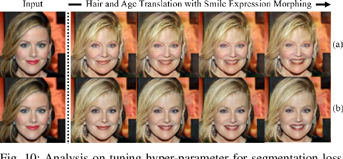 Figure 2 for Segmentation Guided Image-to-Image Translation with Adversarial Networks