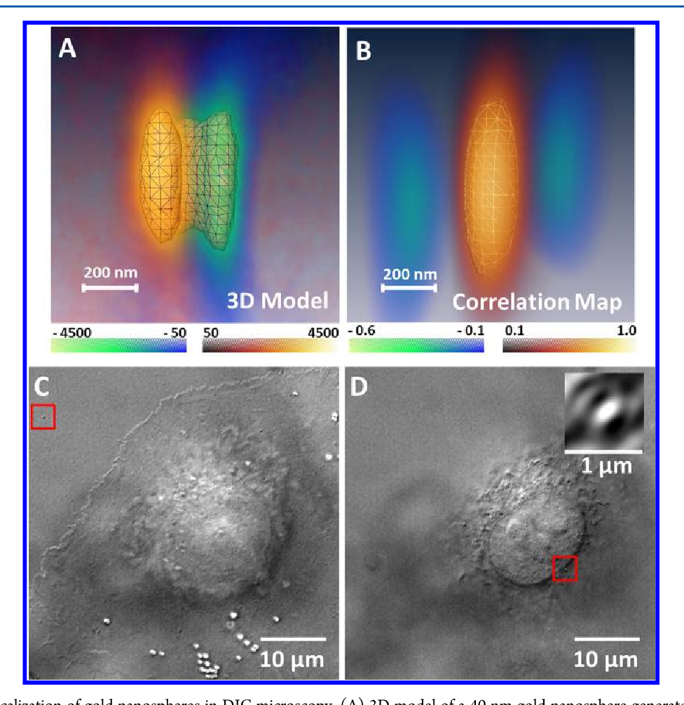 Figure 2 from Single cell optical imaging and spectroscopy