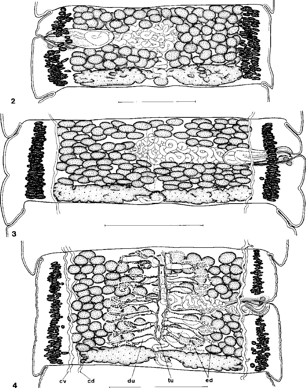 figure 2–4