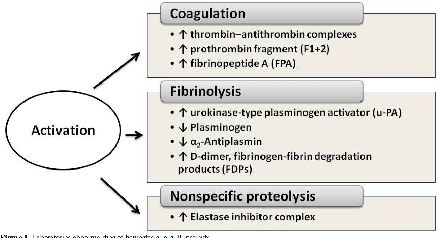 Diathesis in adults. How to treat diathesis in adults 41