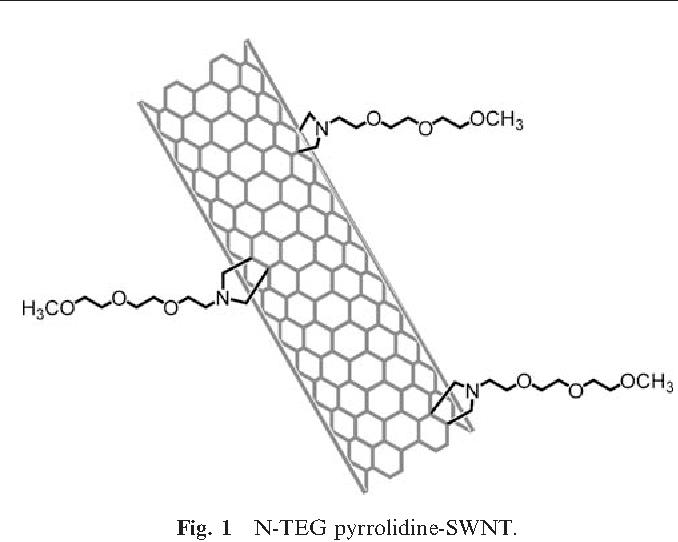 Fig. 1 N-TEG pyrrolidine-SWNT.