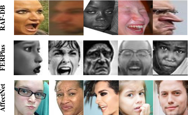 Figure 1 for MViT: Mask Vision Transformer for Facial Expression Recognition in the wild