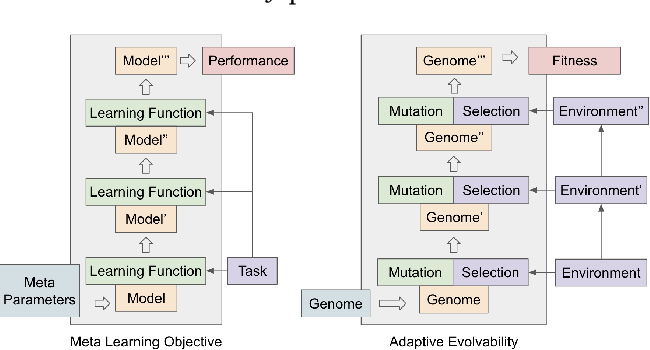 Figure 1 for Population-Based Evolution Optimizes a Meta-Learning Objective