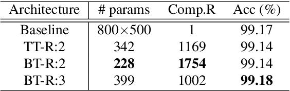Figure 4 for Block-term Tensor Neural Networks