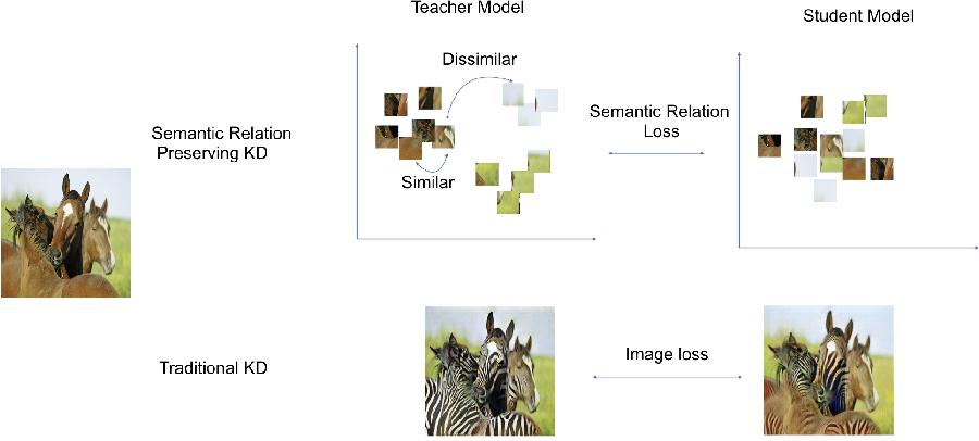 Figure 1 for Semantic Relation Preserving Knowledge Distillation for Image-to-Image Translation