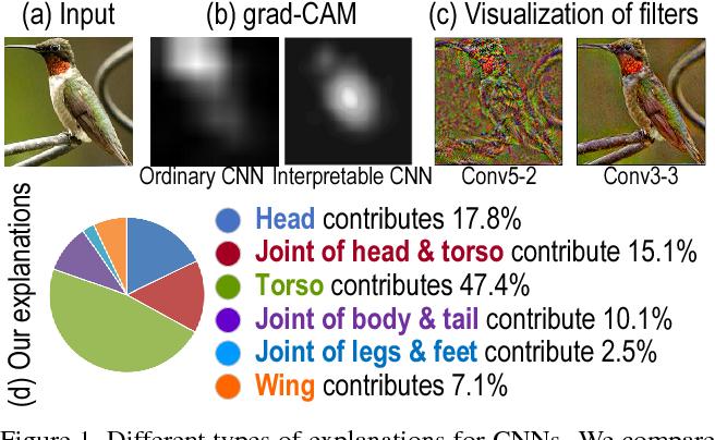 Figure 1 for Explaining Neural Networks Semantically and Quantitatively