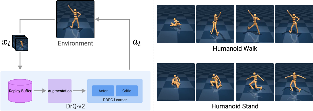 Figure 3 for Mastering Visual Continuous Control: Improved Data-Augmented Reinforcement Learning