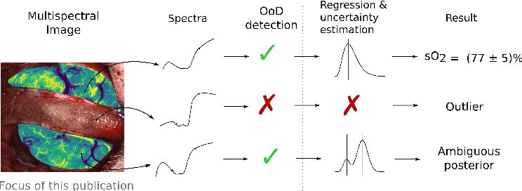 Figure 1 for Out of distribution detection for intra-operative functional imaging