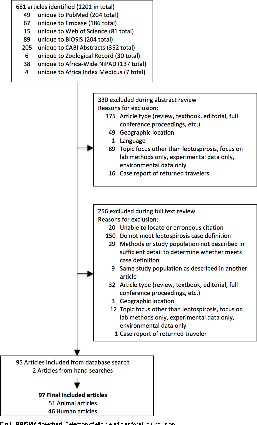 leptospirose hund dissertation
