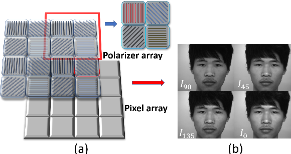 Figure 1 for Face Anti-Spoofing by Learning Polarization Cues in a Real-World Scenario
