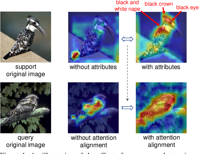Figure 1 for Attributes-Guided and Pure-Visual Attention Alignment for Few-Shot Recognition