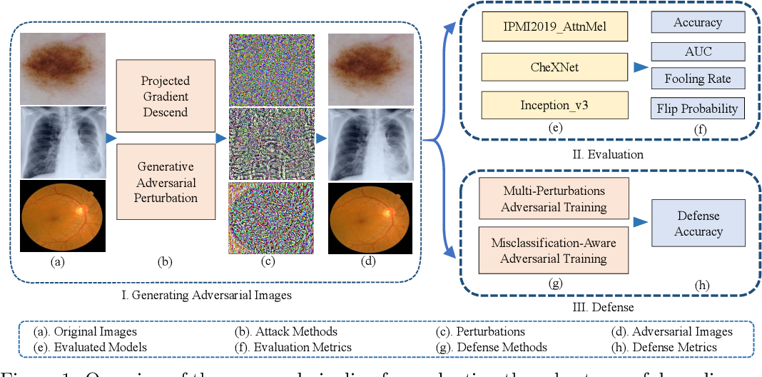 Figure 1 for Towards Evaluating the Robustness of Deep Diagnostic Models by Adversarial Attack