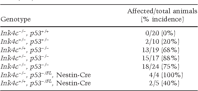 Table 1. Incidence of medulloblastomas in Ink4c, p53 doubly deficient animals irradiated at P5