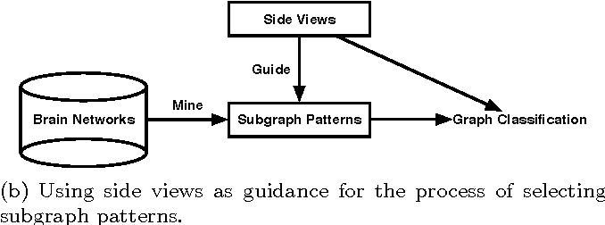Figure 4 for A review of heterogeneous data mining for brain disorders