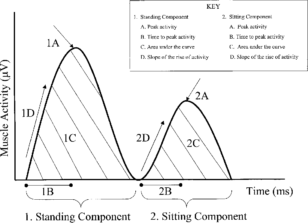Figure 1. Surface electromyography parameters recorded from the quadriceps muscle during a chair stand task.