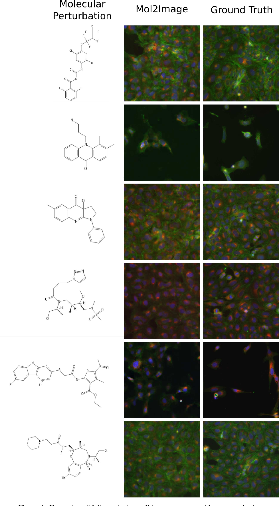 Figure 2 for Improved Conditional Flow Models for Molecule to Image Synthesis