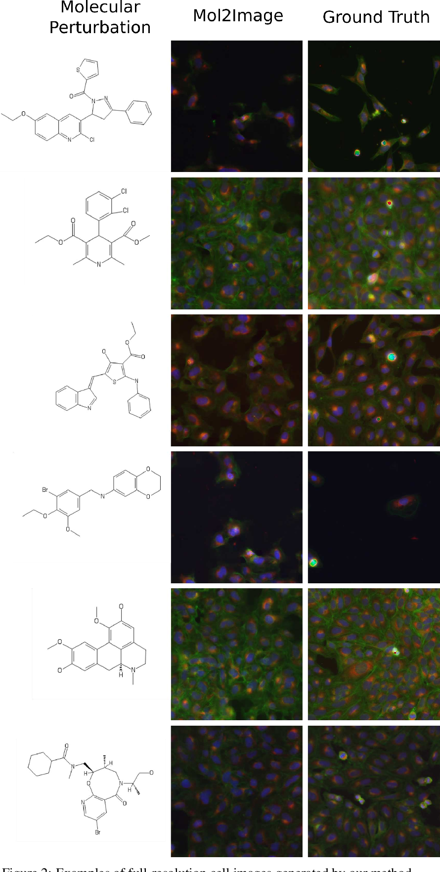 Figure 4 for Improved Conditional Flow Models for Molecule to Image Synthesis