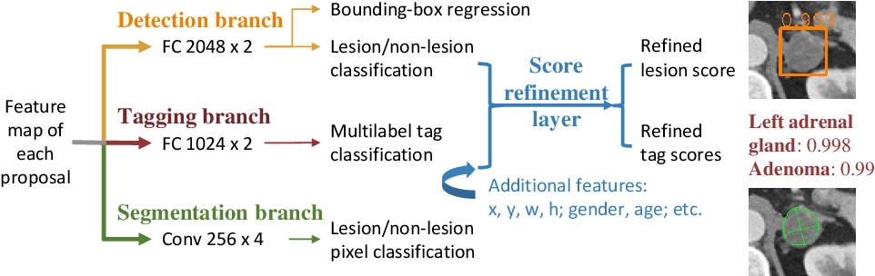 Figure 3 for MULAN: Multitask Universal Lesion Analysis Network for Joint Lesion Detection, Tagging, and Segmentation