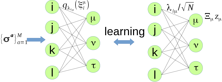 Figure 1 for How data, synapses and neurons interact with each other: a variational principle marrying gradient ascent and message passing