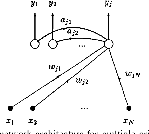 Figure 2.4: APEX network architecture for multiple principal component