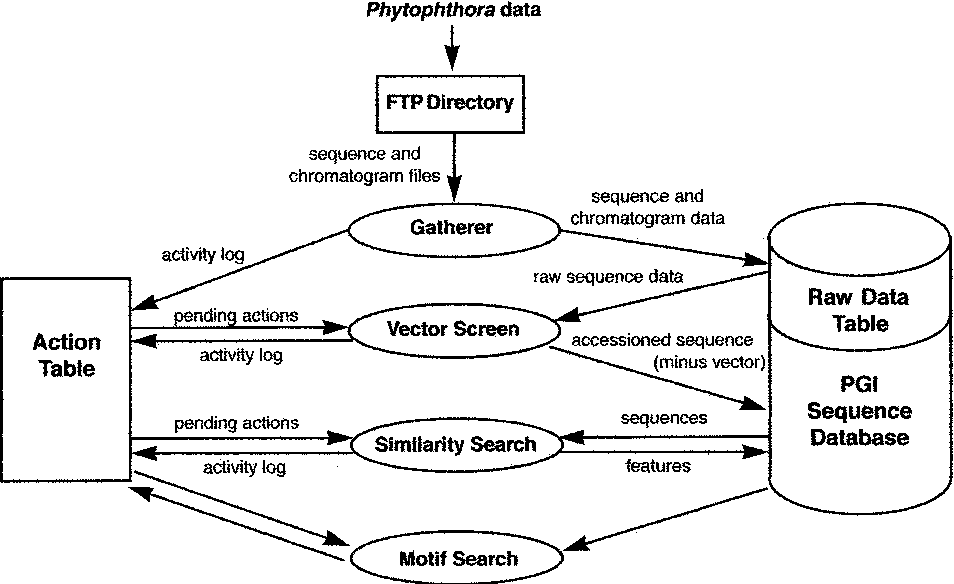 The Phytophthora Genome Initiative Database: informatics and