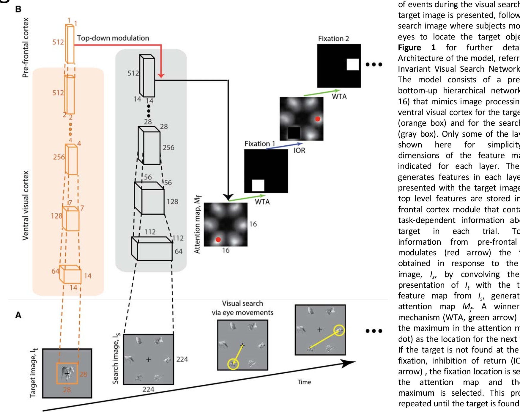 Figure 2 for Finding any Waldo: zero-shot invariant and efficient visual search