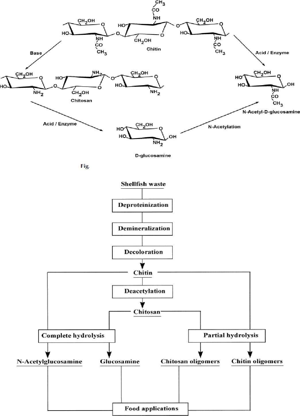 PDF] Depolymerization of Chitosan by High-Pressure Homogenization